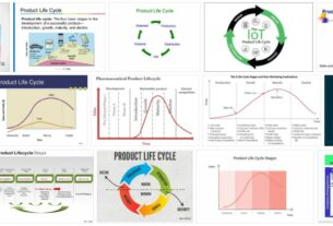 Product Life Cycle 3