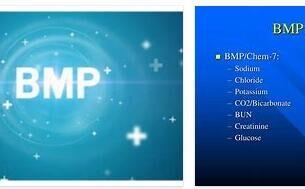 BMP Basics